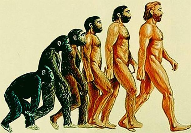 ေလာကဓာတ္သိပၸံ လူသား မ်ိဳးရိုးဗီဇ အရ ဆိုရင္ လူသားဟာ စဥ့္ကဲျဖစ္စဥ္သေဘာနဲ႔ လူ ျဖစ္လာခဲ့တယ္