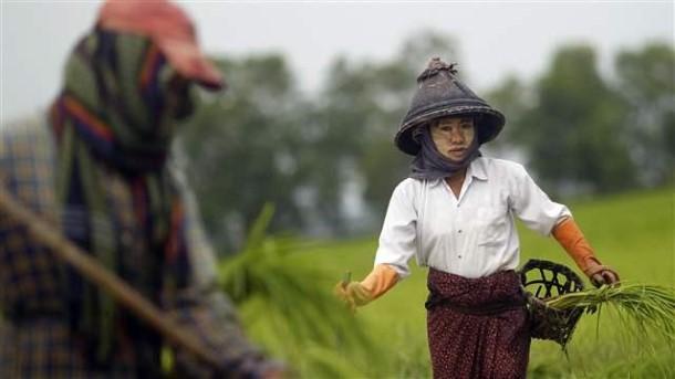 အမ်ိဳးသားေျမအသံုးခ်မႈမူဝါဒတြင္ အမ်ိဳးသမီးအခြင့္အေရး ပါဝင္သည္ (ဓာတ္ပံု - Reuters)